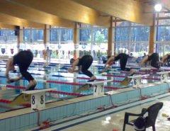 2nd Finswimming European Championships Veterans, Finswimmer Magazine - Finswimming News